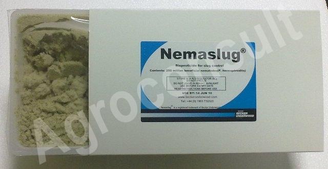 Ochrona biologiczna Zwalczanie ślimaków Nemaslug naturalny preparat nicieniowy